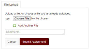 Screenshot of Canvas File-Upload Form